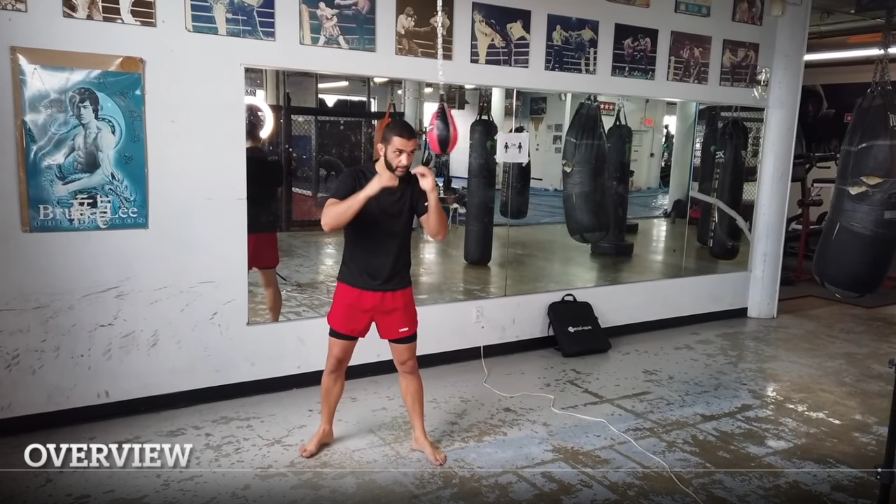Excellent exercises with the maze ball by Firas Zahabi